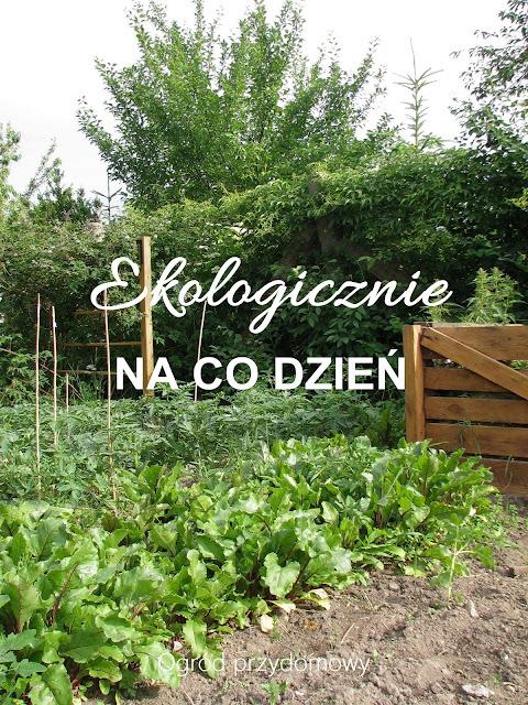 żyć ekologicznie, żwyć w ekologii, codzienność z ekologią, ogród przydomowy