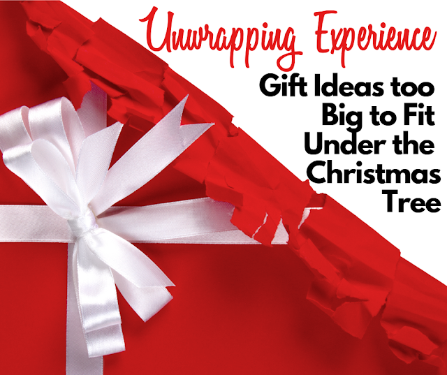 Experience Gift Ideas too Big to Fit Under the Christmas  Tree