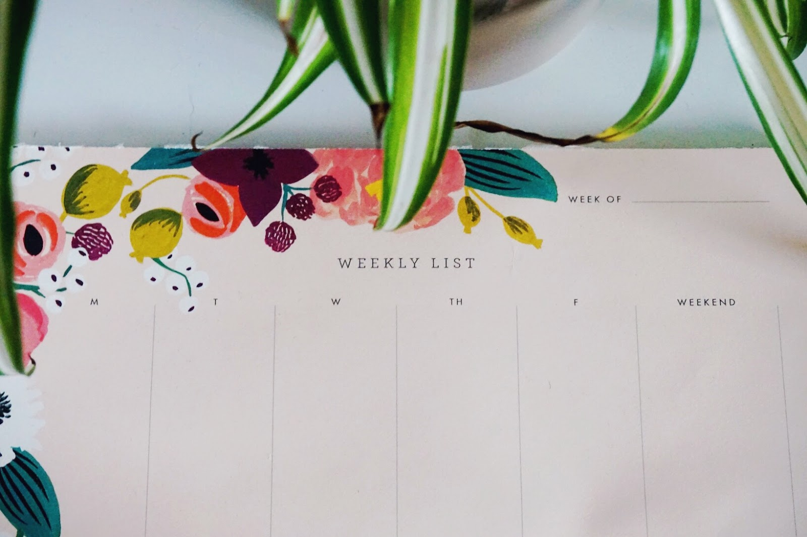 Rifle Paper Co  Weekly Planner
