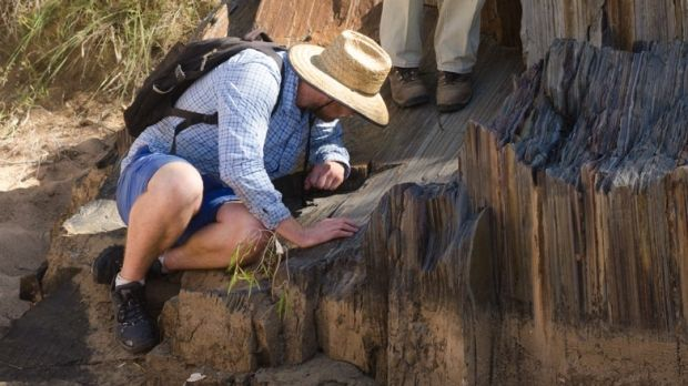 Researchers discover a piece of America in northern Australia