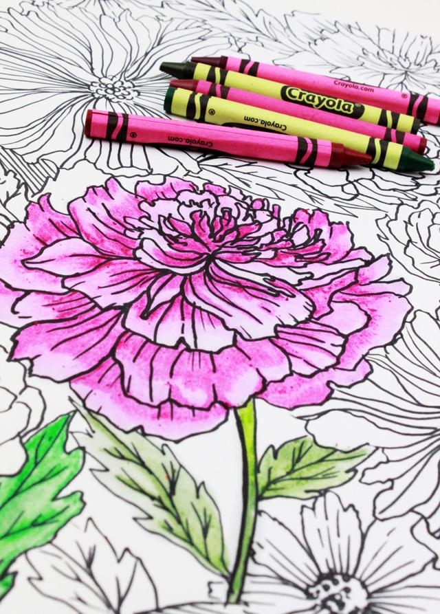 alisaburke: crayons: tips and tricks