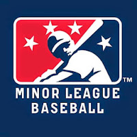 Top MILB Hitters Fantasy Baseball
