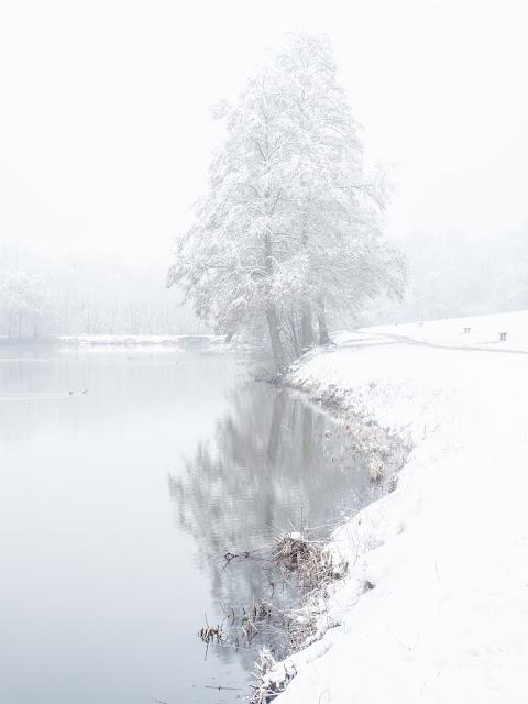 paysage de neige