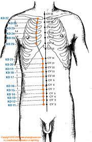 Efektifkan Melangsingkan Tubuh Dengan Akupunktur?