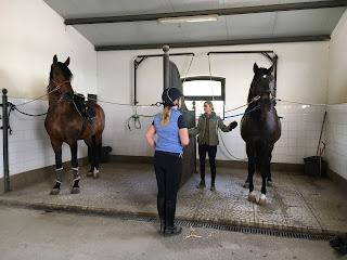 Portugal, Riitta Reissaa, Horsexplore, Avis