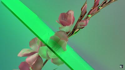 Flume - Never Be Like You feat. Kai ( Martin Solveig Remix )
