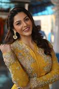 mehreen kaur latest glam pics-thumbnail-7