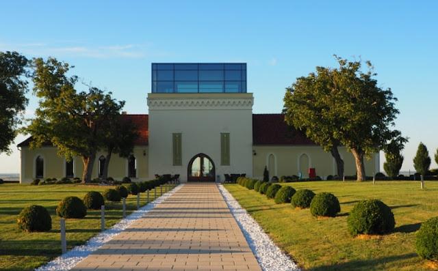 wijntoerisme kroatië, principovak, vina papak, grasevina, traminac, wijntoerisme slavonië, ilocki podrumi, ilok, vukovar, srijem, kroatië,