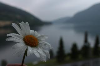 Viajar por Noruega