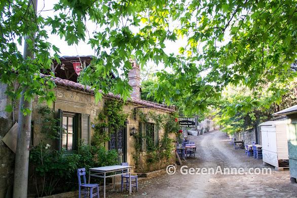 Adatepe köyünün huzurlu sokakları, Küçükkuyu Kaz dağları