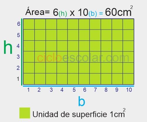 área de un rectángulo base por altura - ejemplo