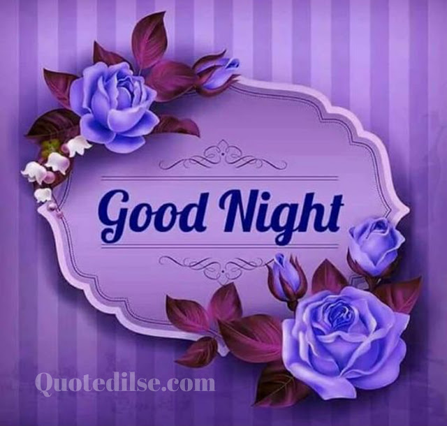 good night friends status