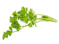 15 Health Benefits Of Celery