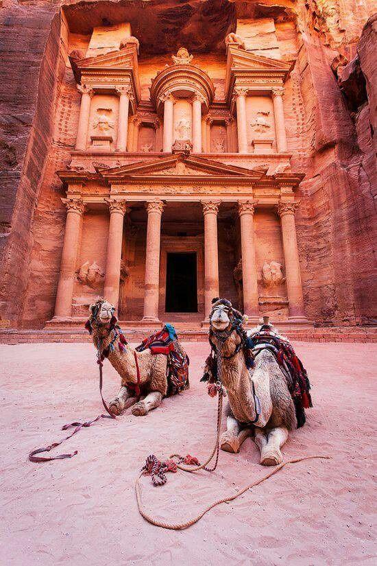 Верблюды возле храма в Петре (Иордания).