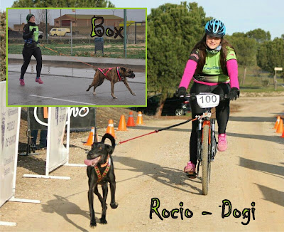 Rocío - Dogi