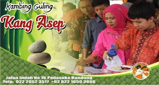 Jasa Catering Kambing Guling