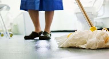 Quiénes son las Trabajadoras y Trabajadores Domésticos, Análisis y Perspectivas Globales según la Organización Internacional del Trabajo