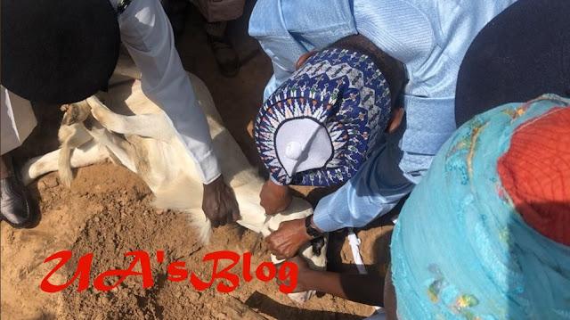 Photos Of President Buhari Slaughtering His Sallah Ram In Daura Emerge Online