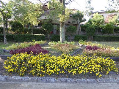 市民の森(鏡伝池緑地) 秋の花壇