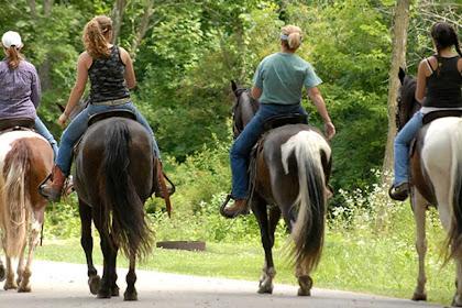Consejos fáciles para montar a caballo para principiantes