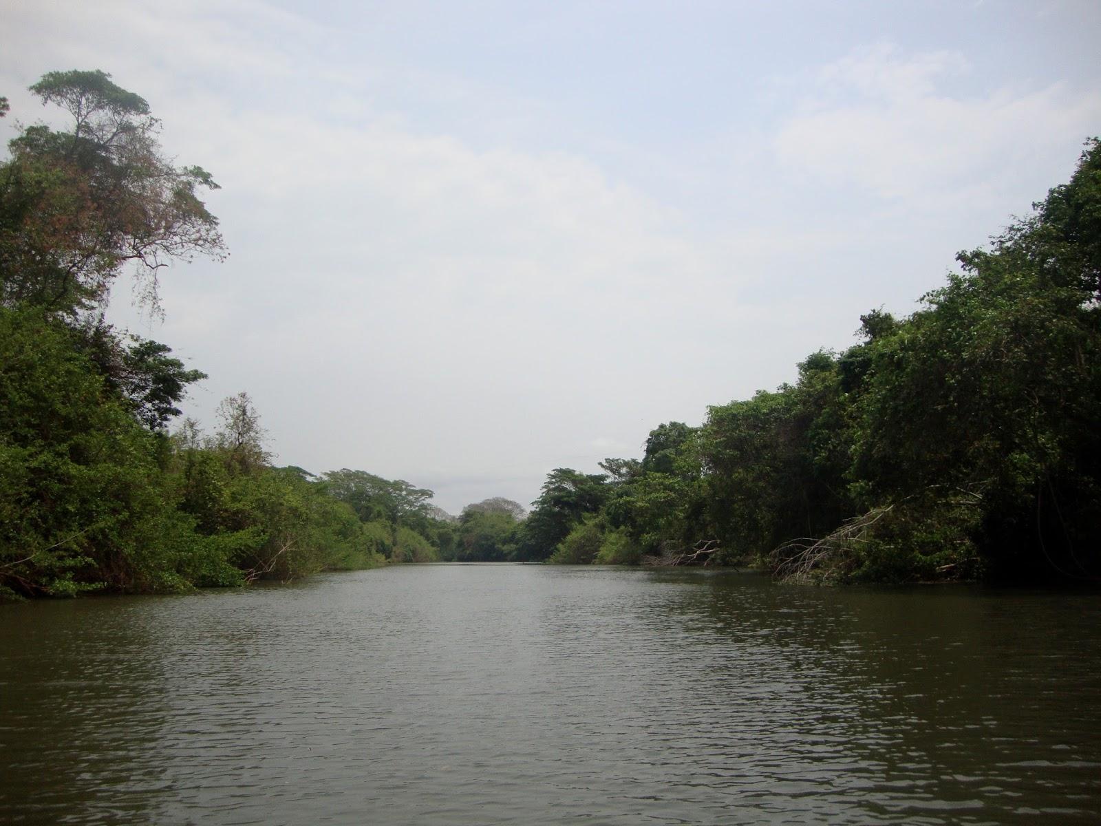 Preservação da Mata Ciliar do Rio das Almas  no Cerrado de Goiás