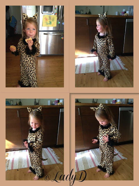 kitty costume: LadyD Books