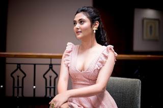 megha chowdhury (8)