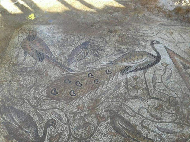 Byzantine mosaics discovered in Hama's countryside by Syrian Army