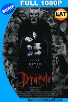 Drácula de Bram Stoker (1992) Latino Full HD 1080P - 1992