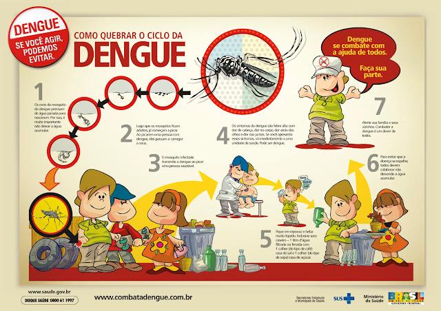 o ciclo da Dengue