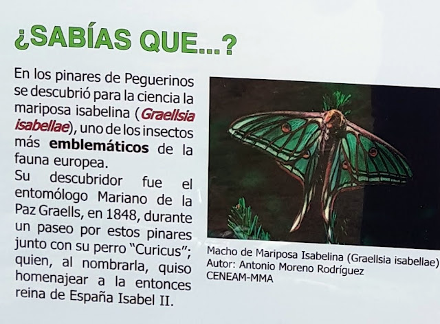 AlfonsoyAmigos - Monumento La Mariposa