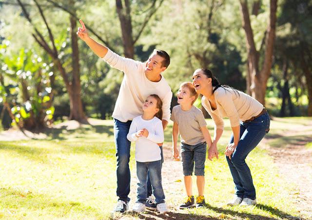 Familia señalando en medio de un prado