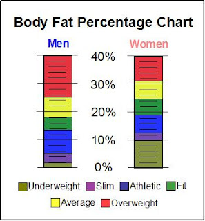 body fat percentage diagram body cavity blank diagram #8
