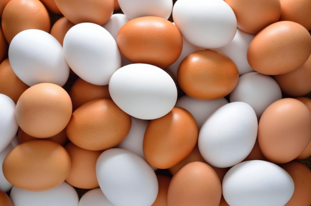 kombinasi telur