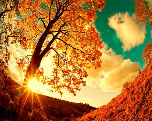 Autumn Vanilla Picture Autumn Sceens
