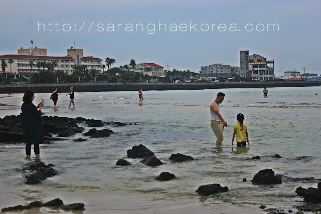 5 Fantastic Beaches of Jeju and Where to Find Them