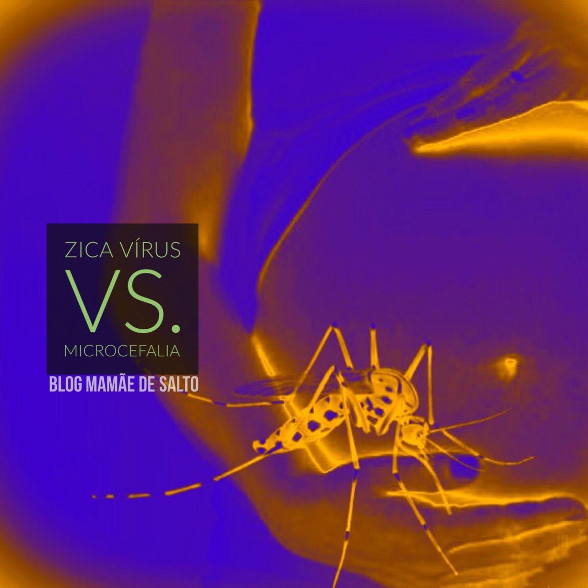 dúvidas sobre a microcefalia e o zika vírus ... blog Mamãe de Salto