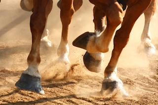 Em Guarabira,  assaltantes a cavalo roubam mulher