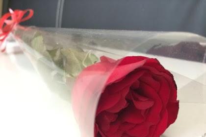Arti Setangkai Bunga Mawar Merah untuk Wanita yang Anda Cintai
