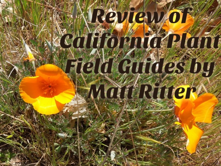 Review of California Plant Field Guides by Matt Ritter