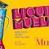 """""""Liquida Mueller"""" de inverno começa nesta semana"""