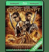 DIOSES DE EGIPTO (2016) WEB-DL 1080P HD MKV INGLÉS SUBTITULADO