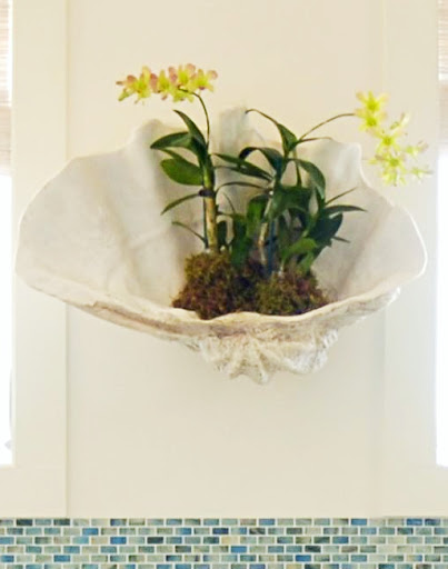 Clam Shell Decorating Ideas Wall Planter