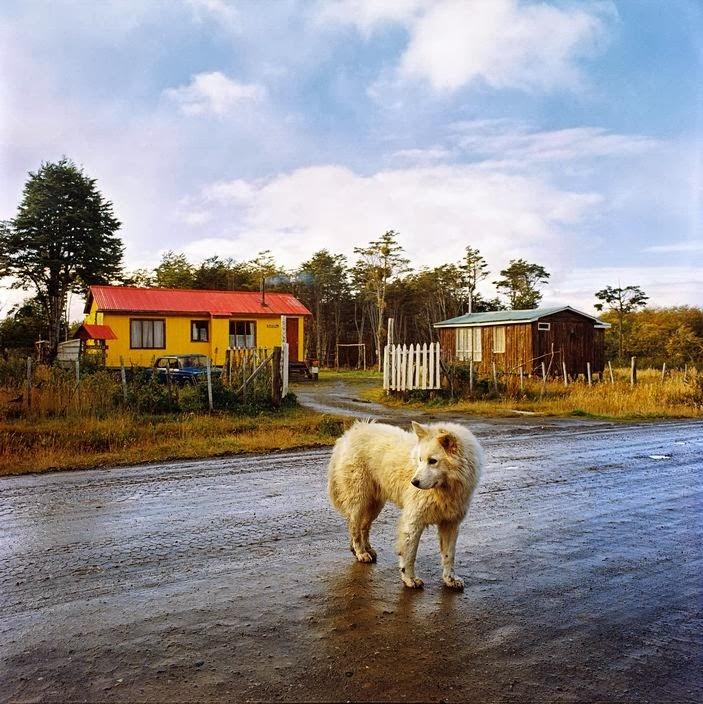 Raymond Depardon Puerto del Hambre, Chile, 2007