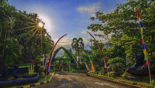 Kebun Binatang Serulingmas – Info Rute, Harga Tiket dan Objek Wisata