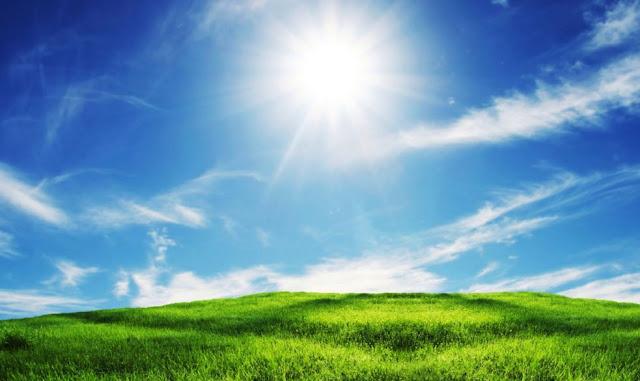 Gambar Background Langit Biru Sinar Matahari di Atas Padang Rumput Hijau Wallpaper HD