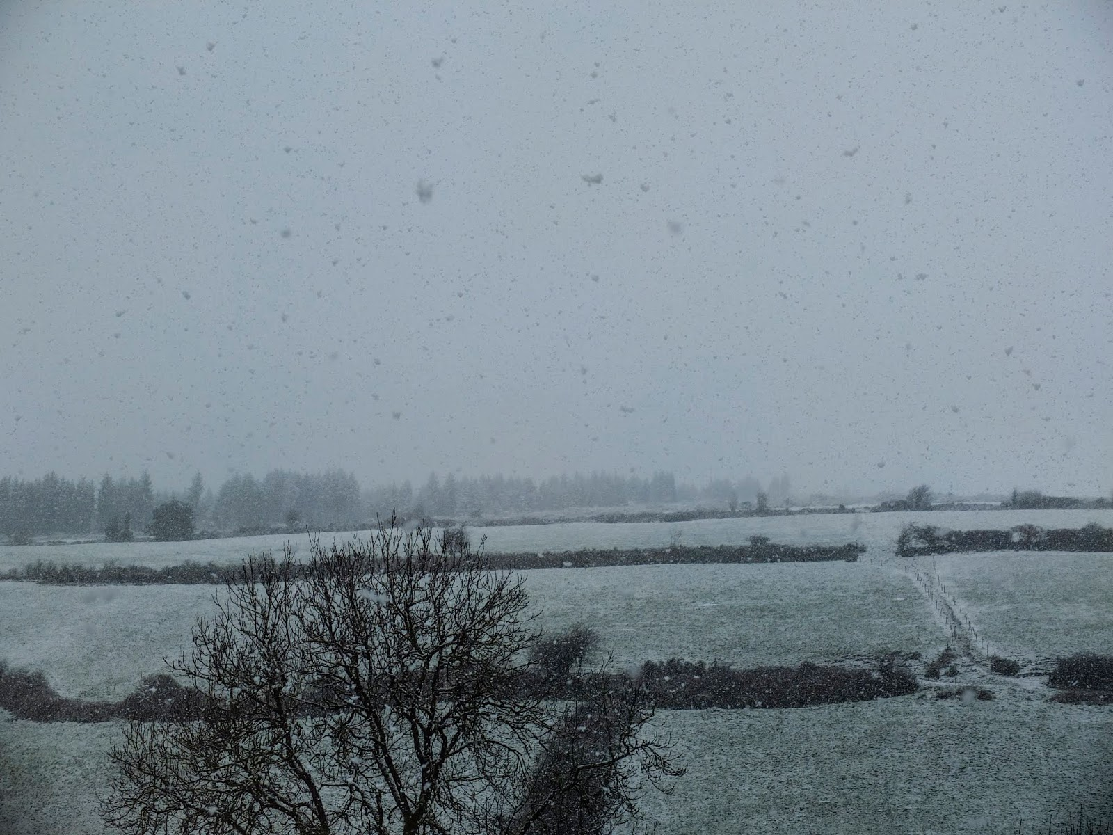 Snow falling in a valley in the Boggeragh Mountains in North Cork.