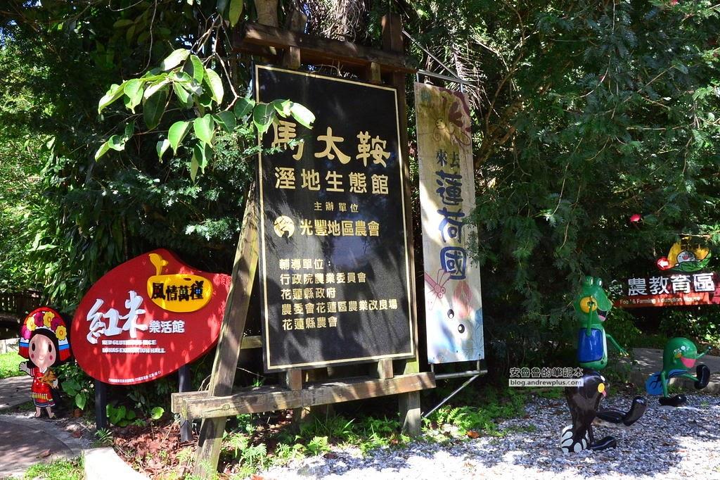 花蓮旅遊景點,馬太鞍濕地,馬太鞍溼地生態園區,花蓮推薦行程,台灣好行