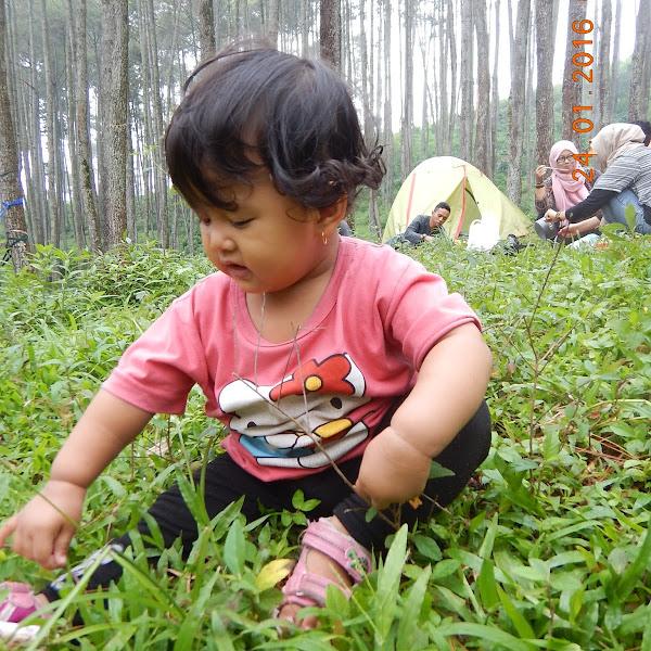 Bermain di Alam Terbuka Membuat Anak Lebih Sehat, Cerdas dan Bahagia