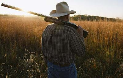 Resultado de imagem para ccj do senado aprova compra de arma de fogo para